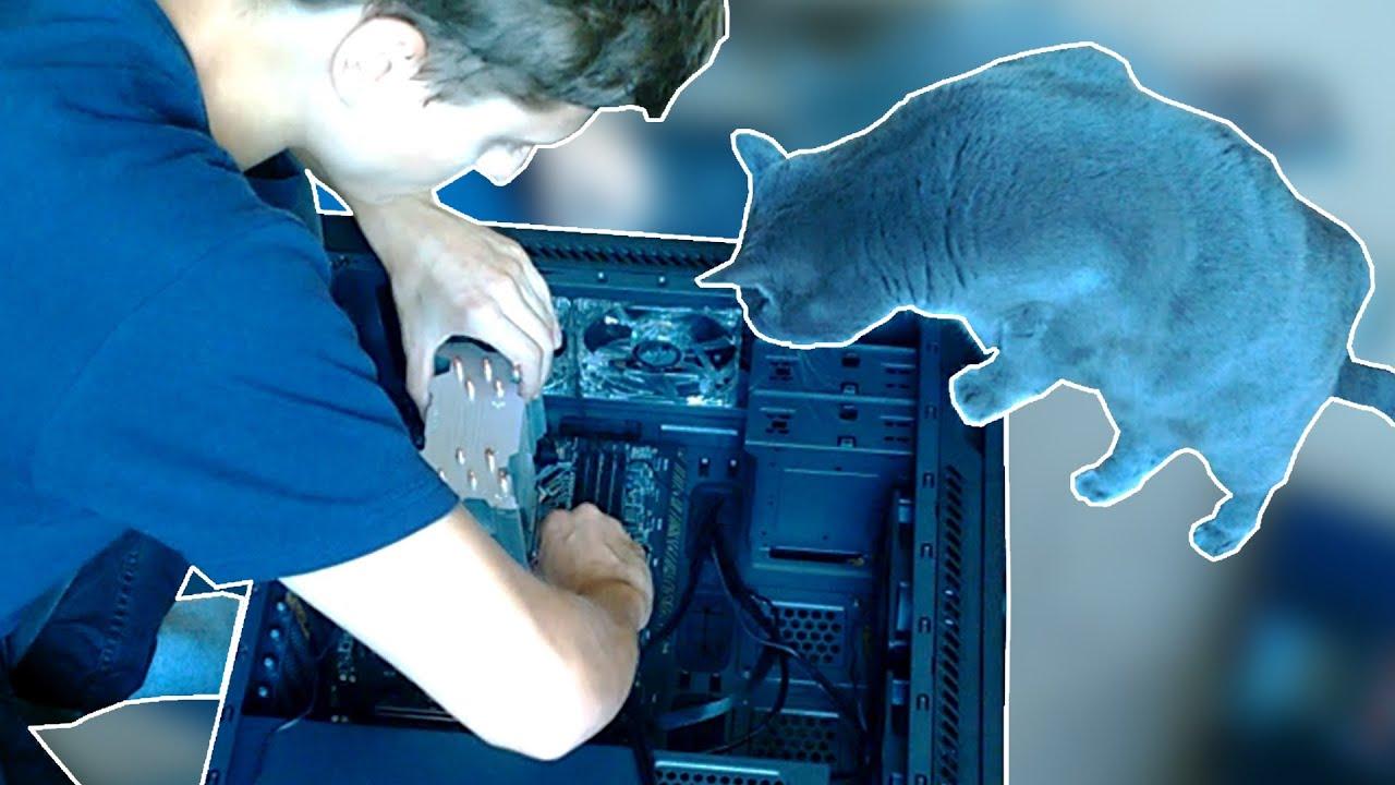 Кошка и я собираем ПК на GTX 1060 6GB и i7-6700K
