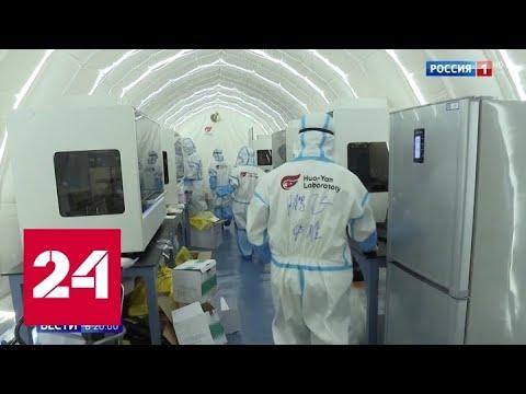 Пекинцы выстроились в очереди: коронавирус в Китае ищут