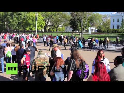 USA: Free weed cuttings outside White House at cannabis 'deschedulisation' demo