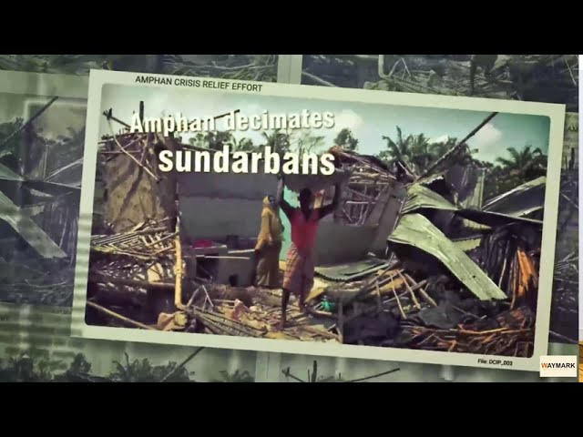 Helping Sundarbans