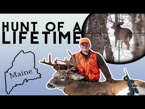 The Biggest Buck Of My Life | Northern Maine Deer Hunting Film 2019