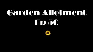 Garden Allotment Ep 50 - Runner bean Experiment,  Shout outs and more