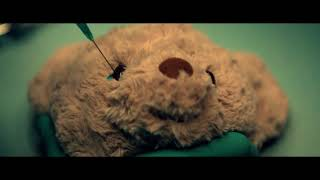Watch: A Teddy Bear Tackles the Trauma of Animal Tests in New Video