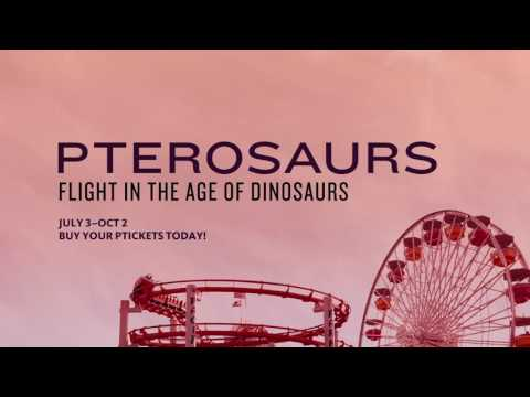 Pterosaurs: Flight in the Age of Dinosaurs at NHM – Santa Monica Pier