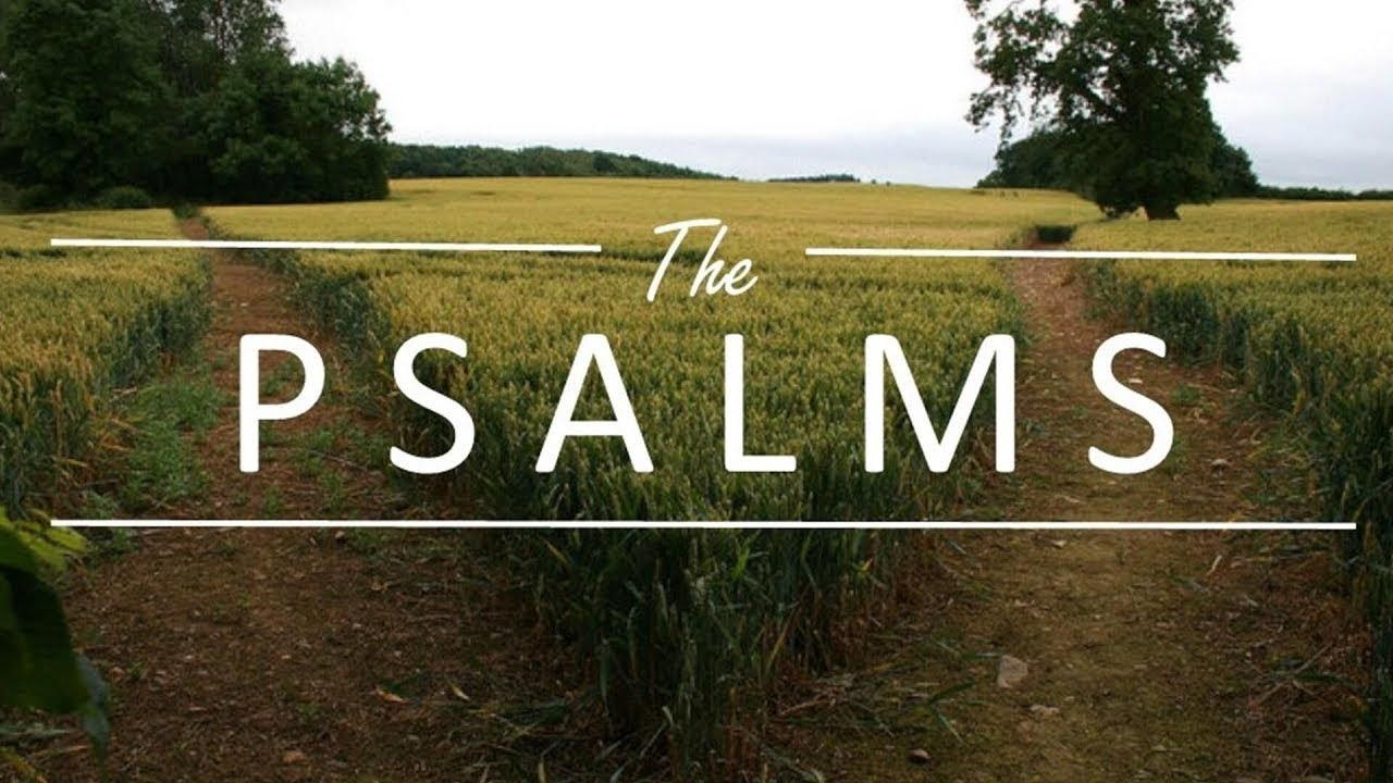 Psalms: Book 1