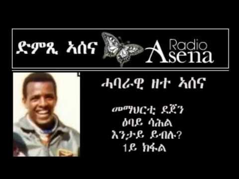 Voice of Assenna: Panel Discussion with Fmr Revolution Schoo