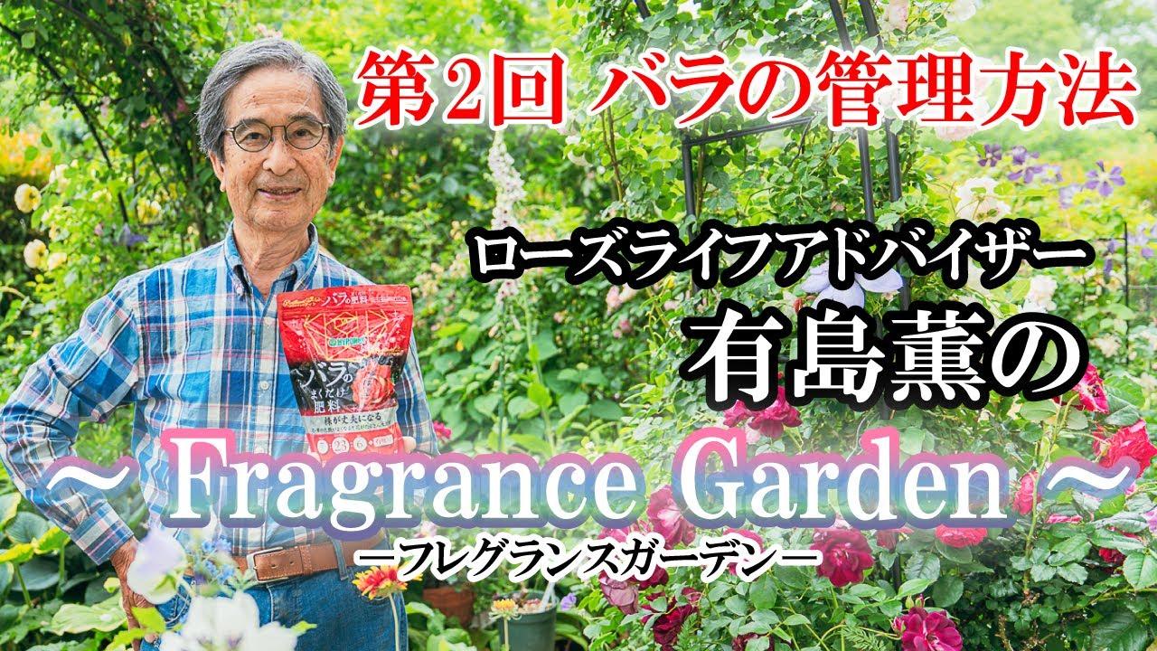 ローズライフアドバイザー有島薫の~Fragrance Garden~ 第2回 バラの管理方法