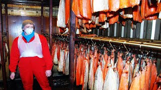 Aquaculture of salmon - Farming and harvesting of salmon - Smoked Salmon Processing