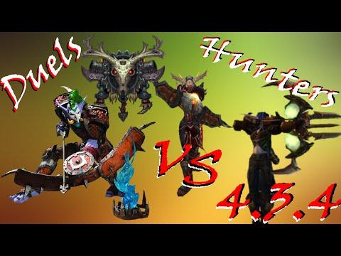Rogue Vs Hunters (Huntards :v) -- Duel's -- 4.3.4 1080p HD 60FPS!!