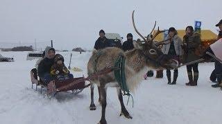 北海道幌延町のトナカイ観光牧場で15日、クリスマスイベント「ホワイ...