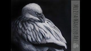 Flamingo in Oil Paints - Grisaille Method - Melissa Mancuso Art