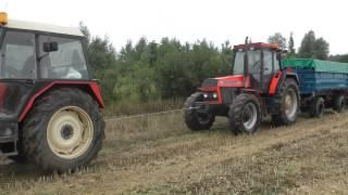 Żniwa Rzepakowe - Wpadka - Ursus 1634 & Zetor 7745 vs 20 ton rzepaku [Dźwięki Silników]