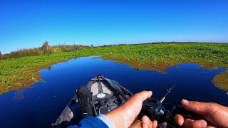 Summer Bass Fishing on the California Delta