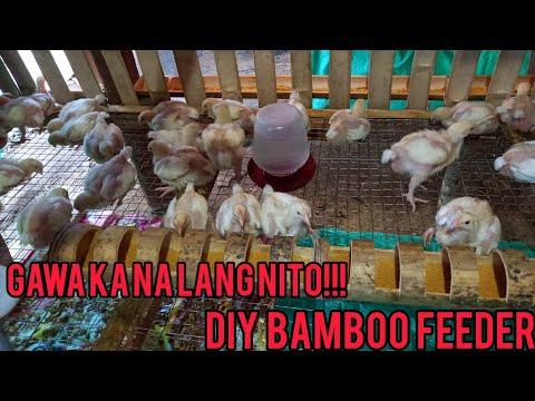 DIY Bamboo feeder