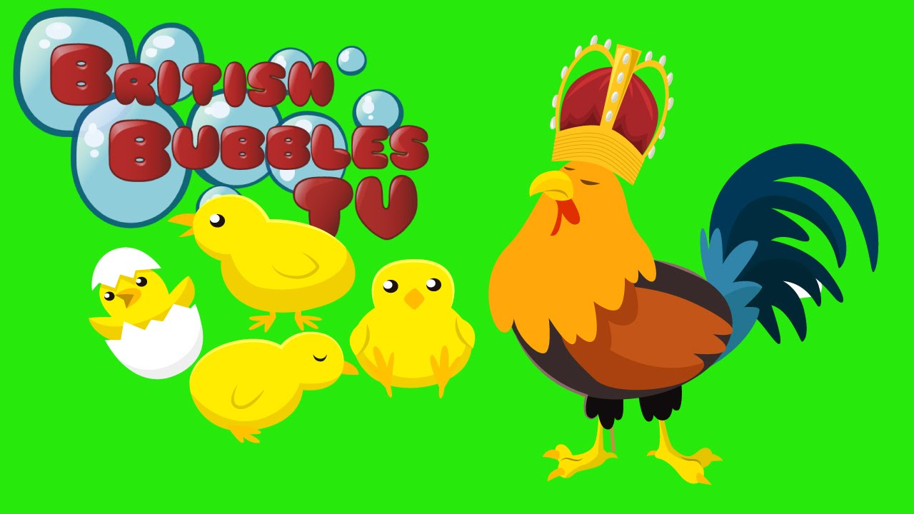El Rey De Los Pollos