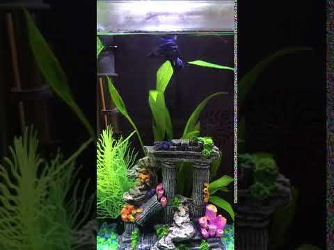 Aquarium Decorations Fish Tank