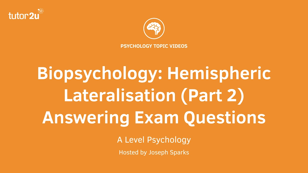 A-level Biological Psychology Revision for Paper 2 | Simply