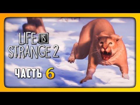 НОВАЯ СЕМЬЯ? ✅ LIFE IS STRANGE 2 (Episode 2) Прохождение #6 thumbnail
