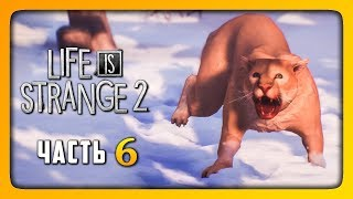 НОВАЯ СЕМЬЯ? ✅ LIFE IS STRANGE 2 (Episode 2) Прохождение #6