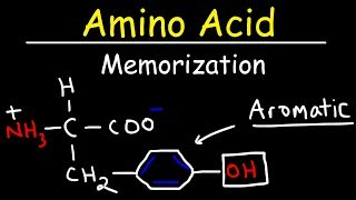 Memorize The 20 Amino Acids - The Easy Way!