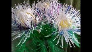 Цветы из пластиковых бутылок!!! Просто и красиво!!!