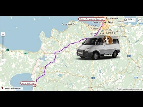 Путешествие из Петербурга в Гдов на биглемобиле