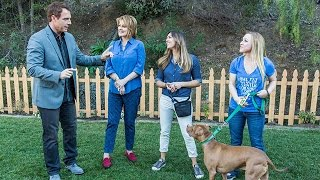 Home & Family - Using Positive Reinforcement To Train Your Dog
