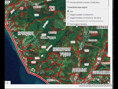 Как пользоваться публичной кадастровой картой Росреестра