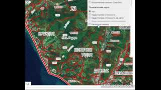 видео Публичная кадастровая карта РосРеестра