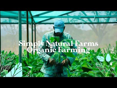 Simply Natural Farms - Organic Farming