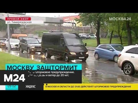 Штормовое предупреждение в Москве продлится до 21:00 - Москва 24