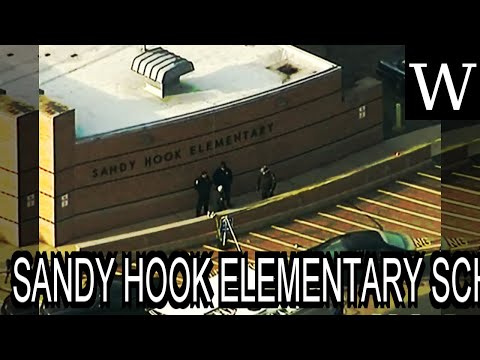 SANDY HOOK ELEMENTARY SCHOOL shooting - Documentary