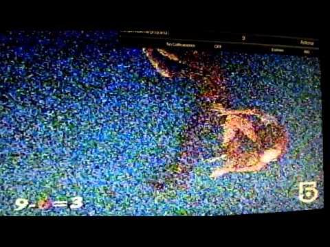 TV DX TROPO XHAI-TV Canal 9 análogo Las Lajas, Veracruz 27.01.2015 727 Km