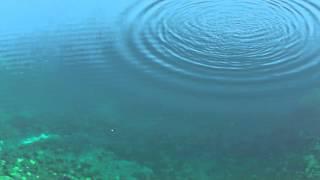 видео Вода Байкала
