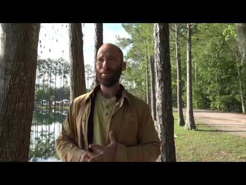 Vlog: Okefenokee Swamp (East Entrance) - Georgia 20150329