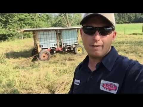 Mobile Cattle Shed Update at Strong Roots Farm