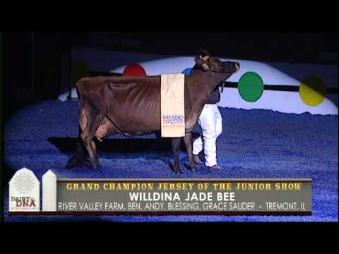 World Dairy Expo 2015 Supreme Champion of the Junior Show