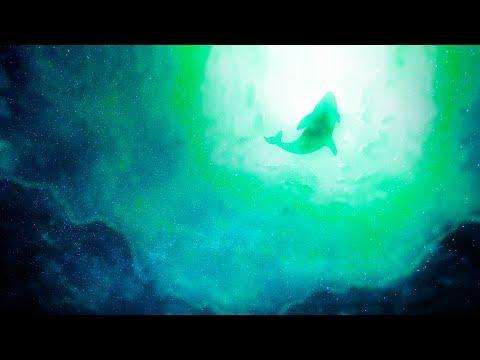 Airdraw, Jo.E & Aaren - Bryde's Whale [Silk Music]