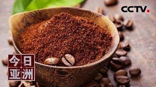 [今日亚洲]速览 环保!种蘑菇养昆虫 咖啡残渣用处多| CCTV中文国际