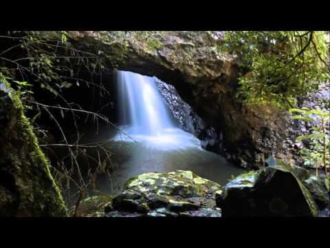 Natural Bridge/Arch at Springbrook National Park, Gold Coast