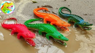 Flock of mischievous crocodiles, tyrant dinosaurs, ducklings - children's toys H1099A ToyTV