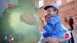 Смотреть видео «Рыбная неделя» в Москве 2019: как это было! онлайн