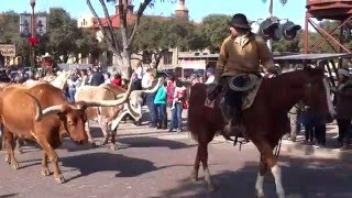 Fort Worth Stockyards Cattle Drive 12-5-2015