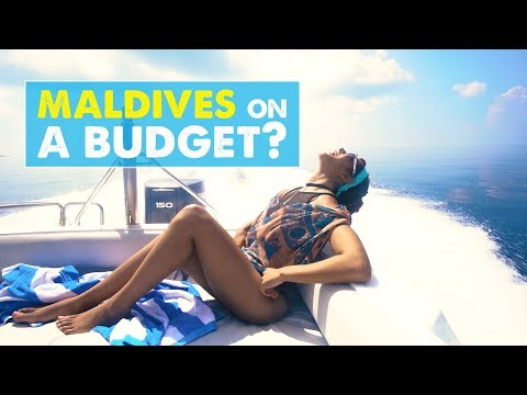 MALDIVES ON A BUDGET! Also...THE CORAL REEFS ARE DEAD ☹ | Newlywed Diaries Vlog 02