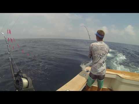 Deep Sea Fishing For White Marlin And Mahi Mahi Ocean City MD