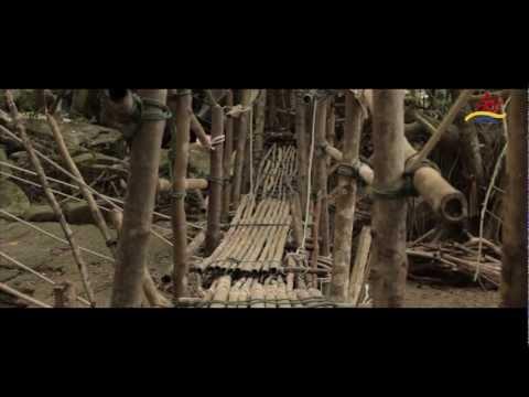 PARADISE BEACH RESORT KOH SAMUI – Island Adventure and Culture