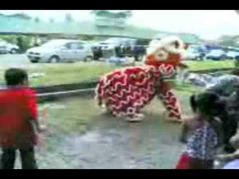 funny lion dance.wmv