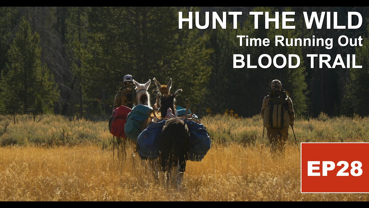 HUNT THE WILD: BLOOD TRAIL - S2, EP28