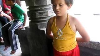 Bharajari ga pitambar