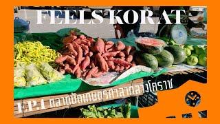 FEELS KORAT EP.1 ตลาดนัดเกษตรศาลากลางโคราช